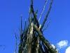 kupala-08_010-rugevit-ru_